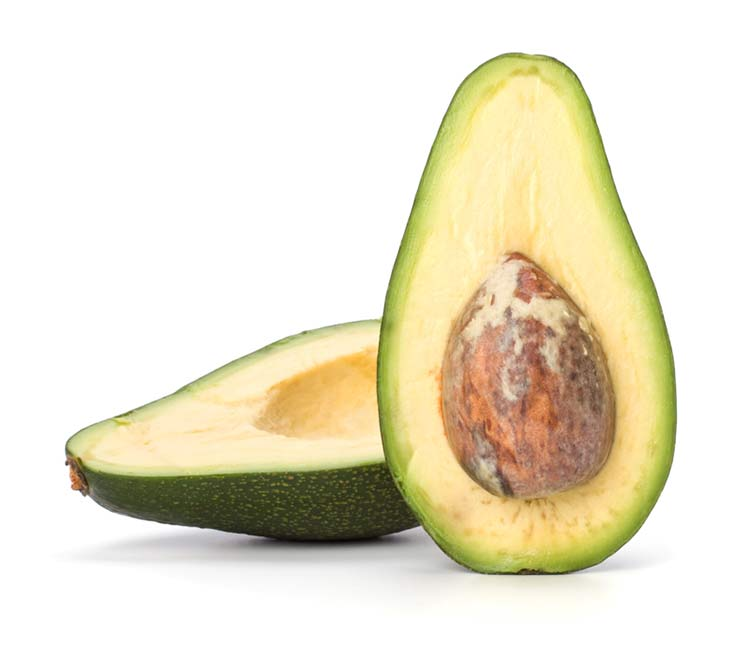 avocadohead