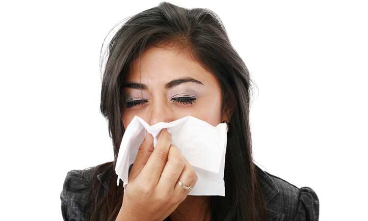 allergyhead